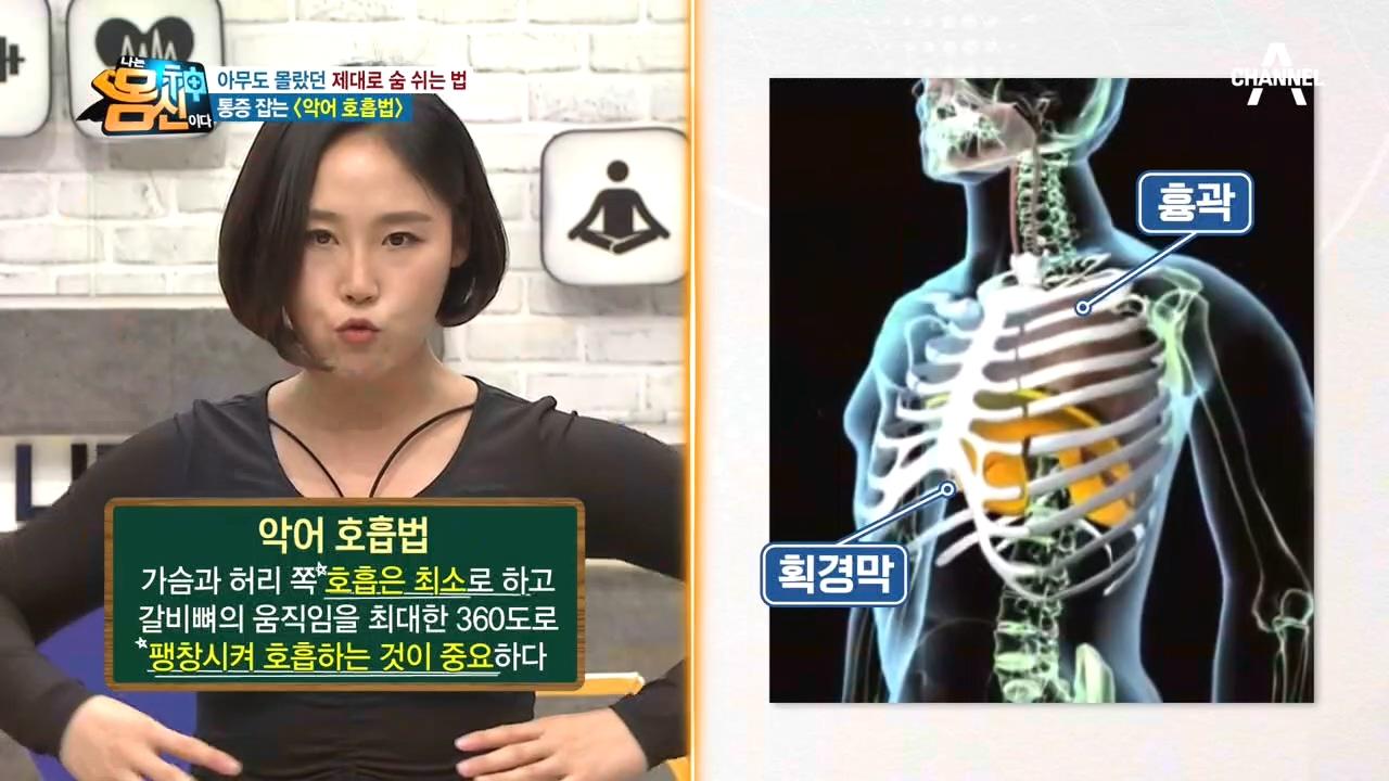 호흡으로 통증 잡는「악어 호흡법」갈비뼈의 움직임을 360˚로?!