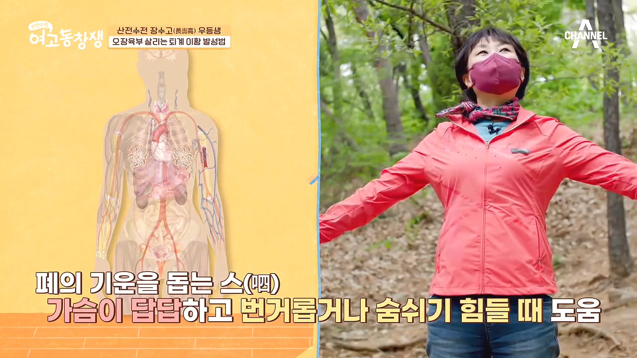 ▣갱년기 극복 비법▣ 오장육부를 되살리는 '퇴계 이황 ....