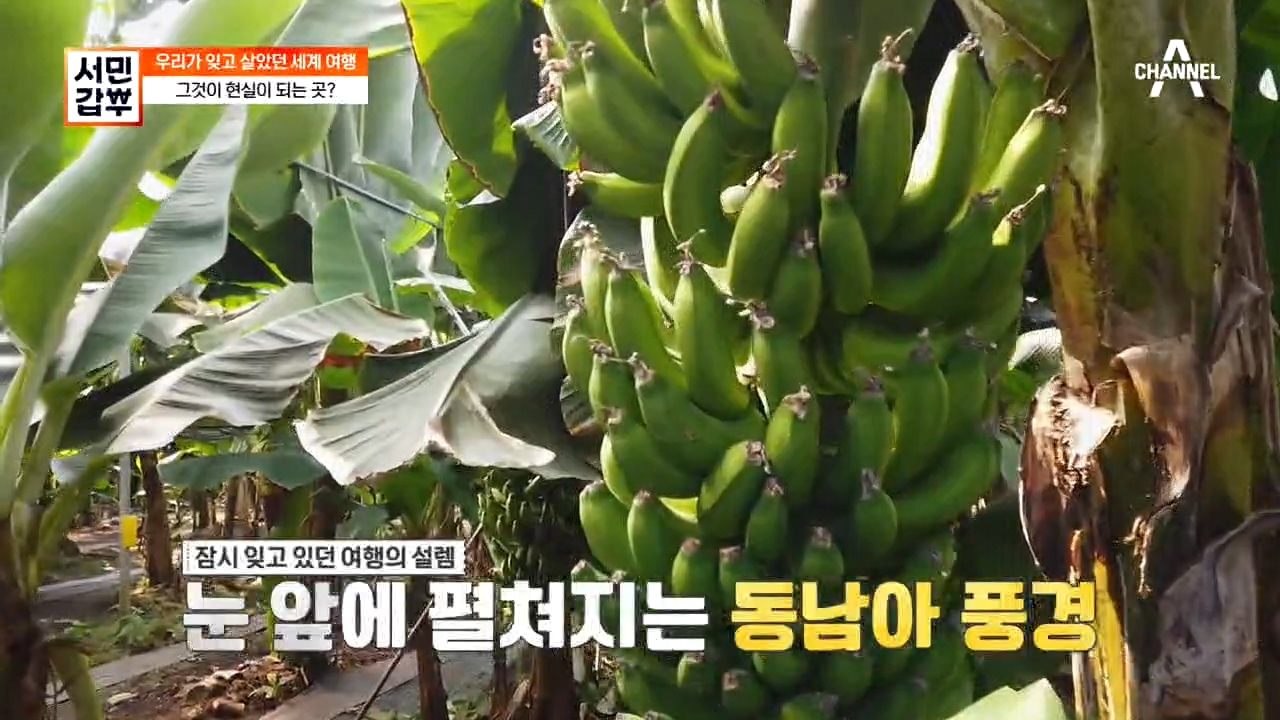 서민갑부 332회