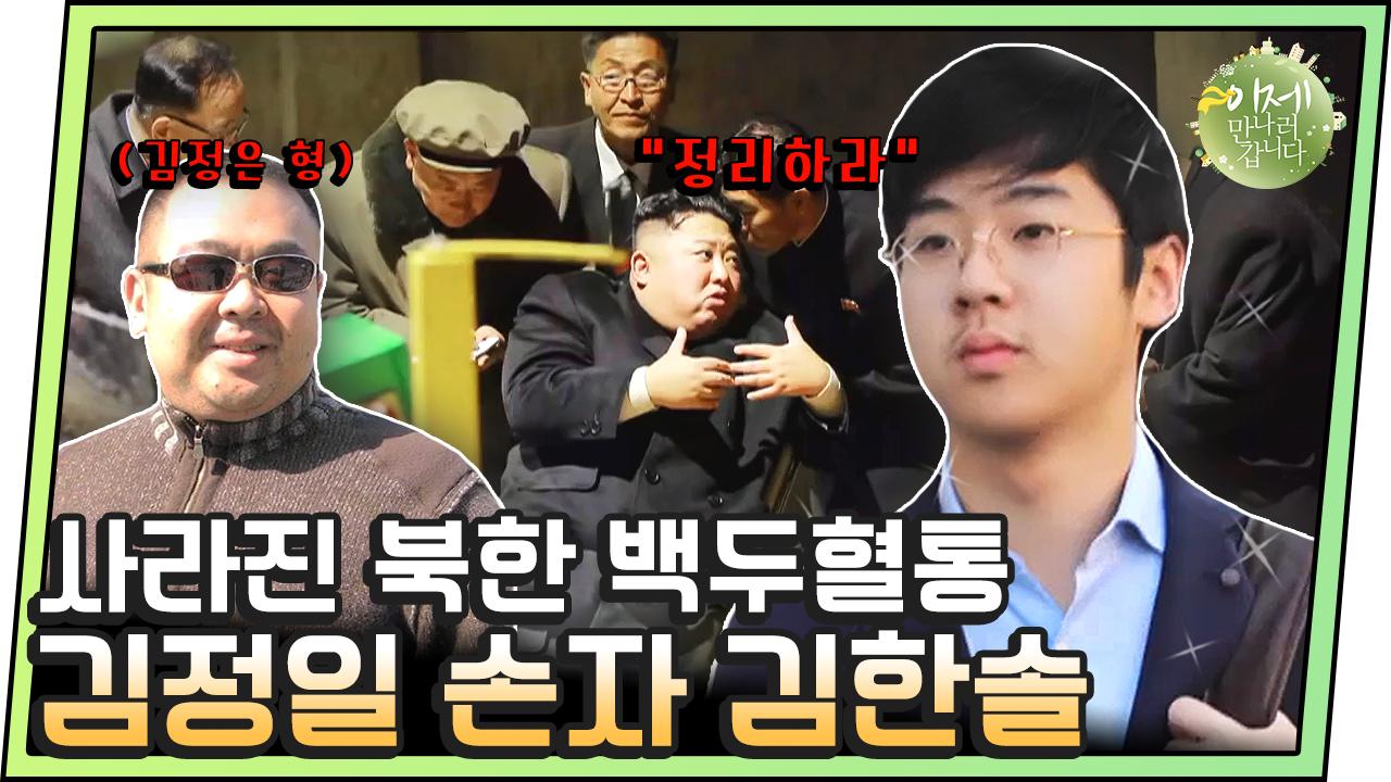 [#이만갑모아보기] 김정남 피살 4년 후 밝혀진 김한솔....