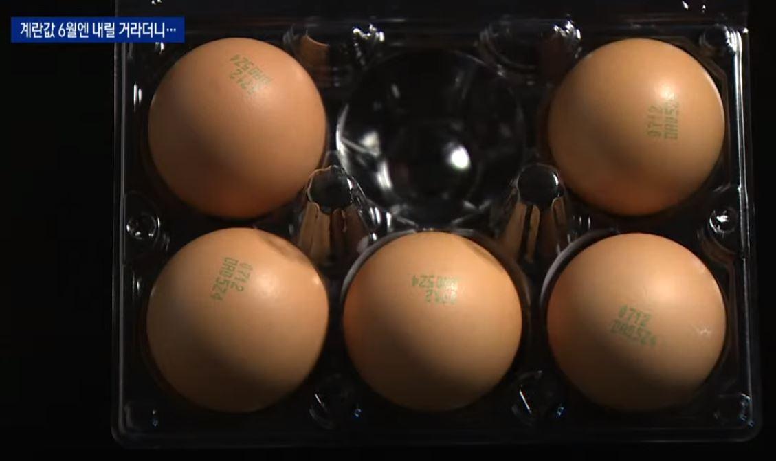 내려올 줄 모르는 계란값, 왜?…'느린 보상' 한몫