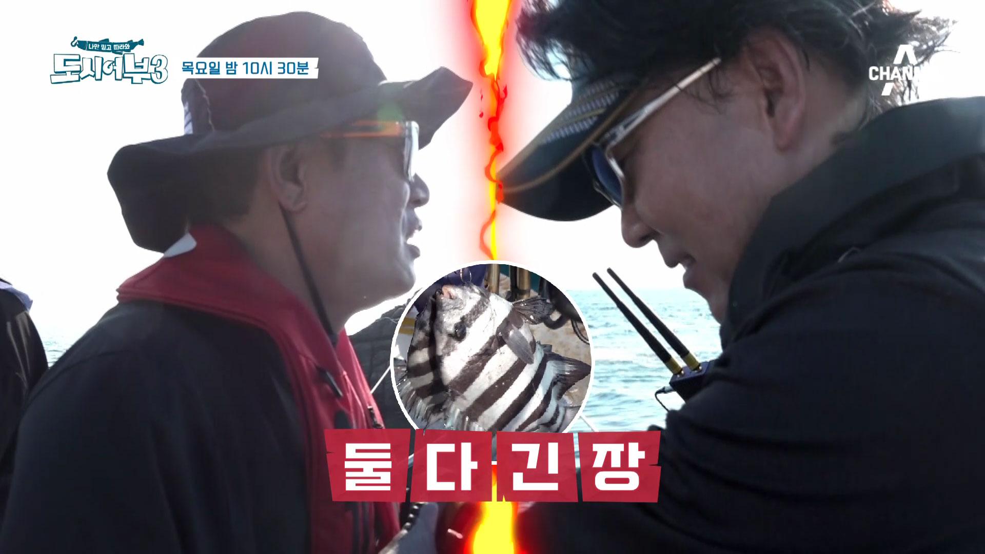 [선공개] 킹경규vs박프로 쌍돌돔 진흙탕싸움의 승자는?