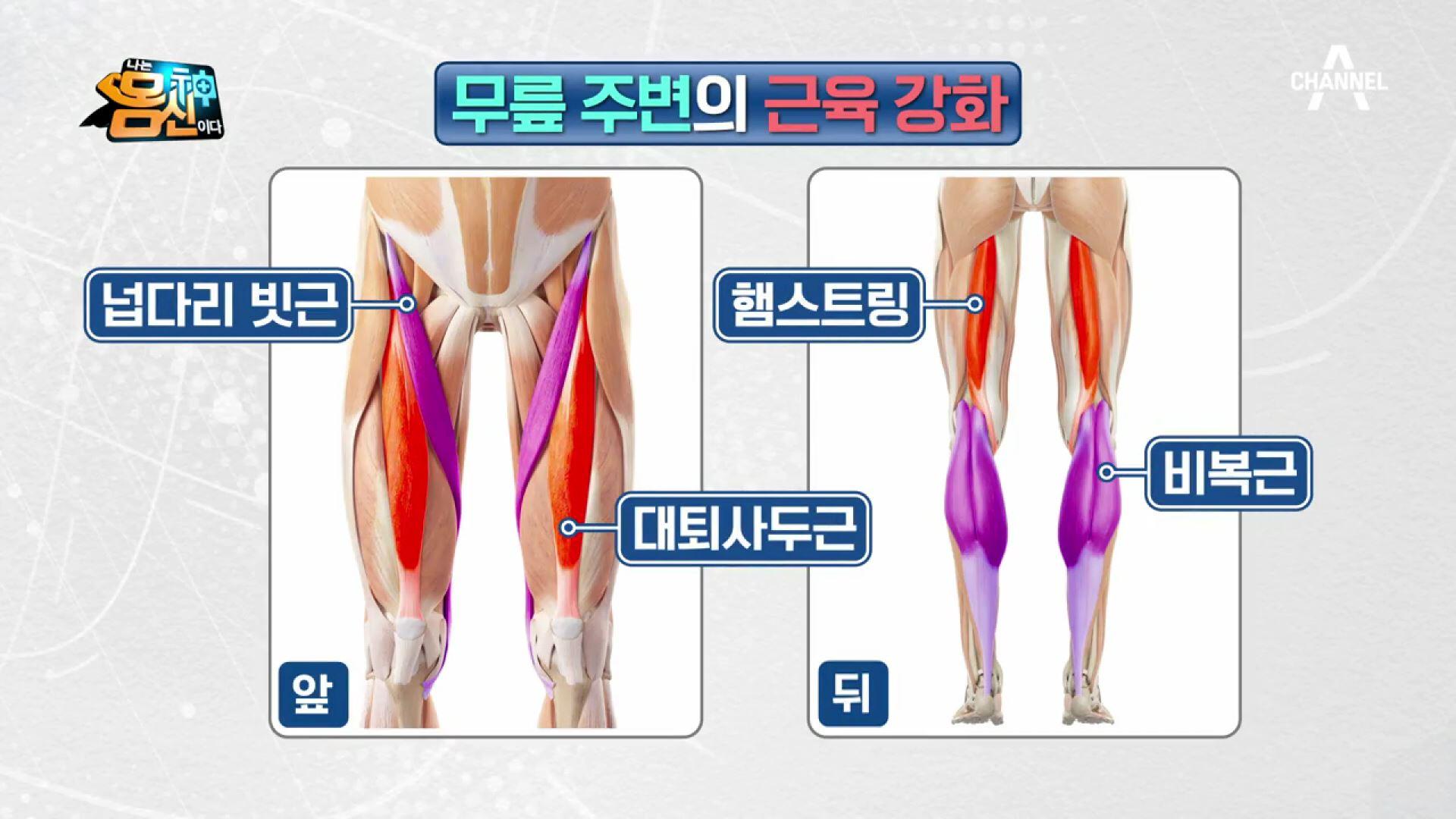★림픽 4위 신화를 이룬 득점의 비결은? 무릎 주변 근....