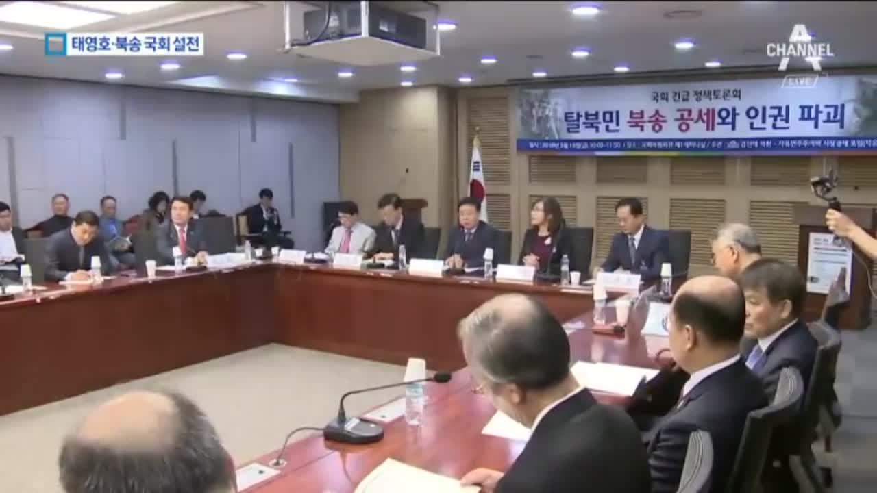 """野 """"탈북 여종업원 북송 반대""""…與, 태영호에 '딴죽'"""
