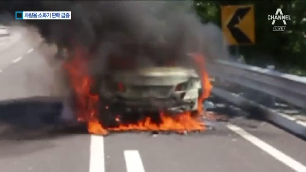 내 차도 혹시?…잇단 화재에 차량용 소화기 '불티'