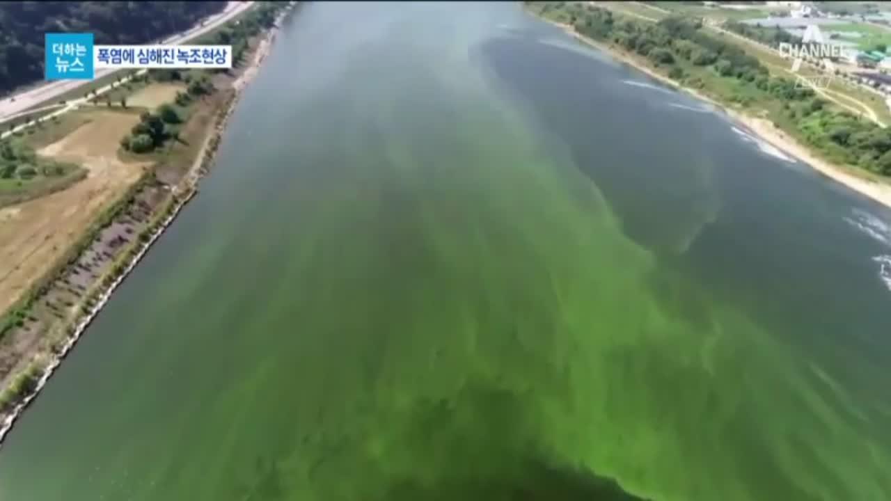[더하는뉴스]폭염 속 녹조와의 싸움…수돗물을 지켜라