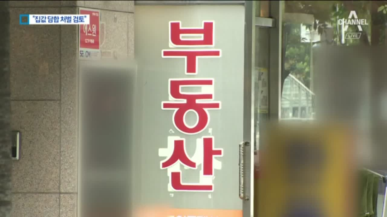 """중개업자 이구동성 """"집값 담합 심각""""…정부 규제 먹히나"""