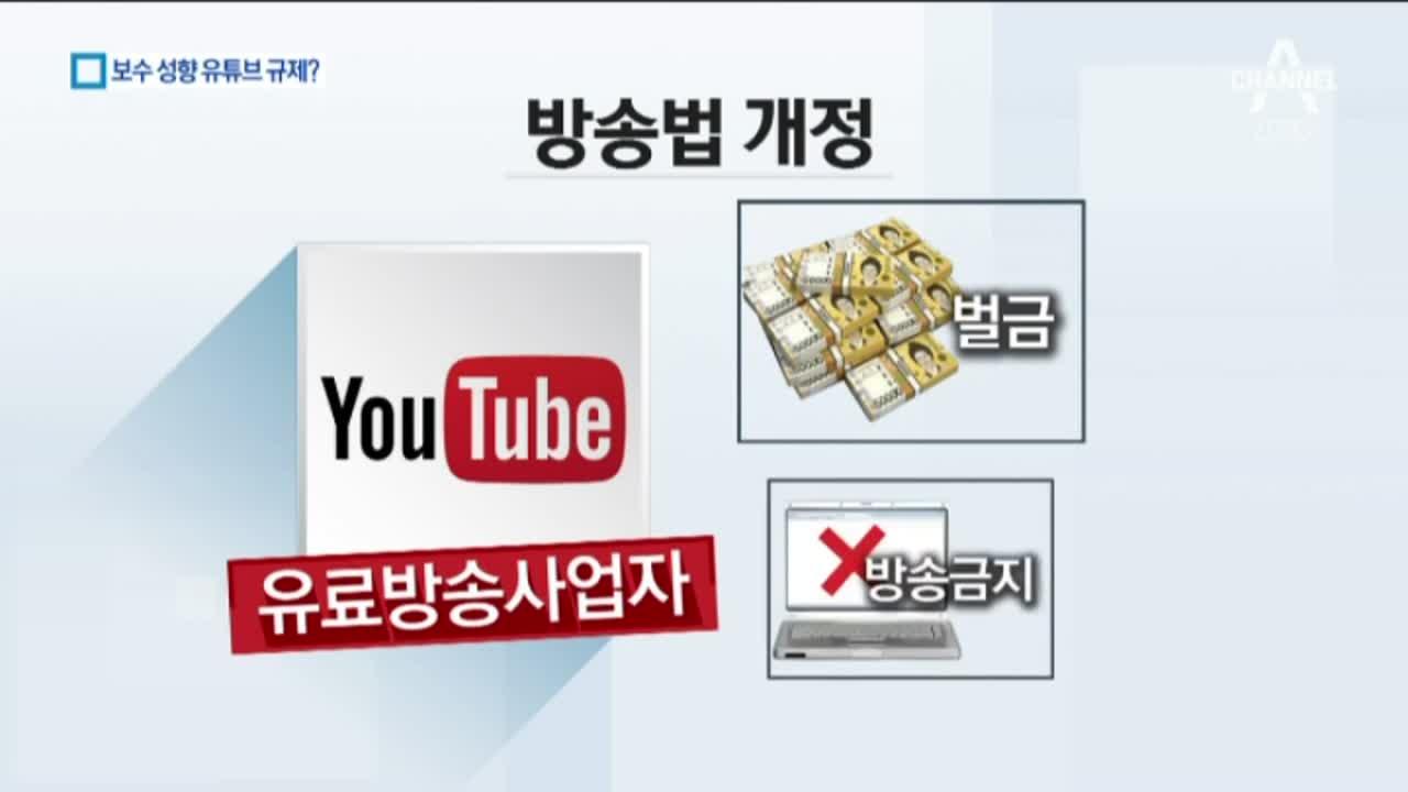 """'우파 유튜브' 손보기 나선 여당…""""표현의 자유 침해"""""""