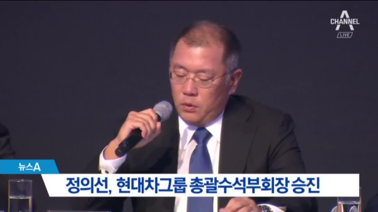 정의선, 현대차그룹 총괄수석부회장 승진