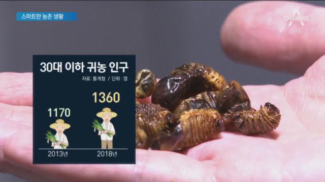 앱으로 키운 굼벵이 매출 1억…청년 농부의 '스마트팜'