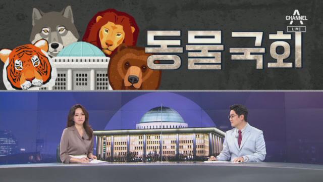 [여랑야랑]동물국회 / 달라진 증인들