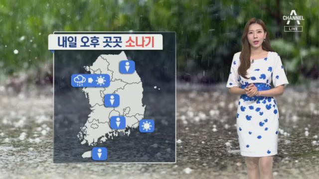 [날씨]내일 아침까지 강한 비…무더위 더 심해져