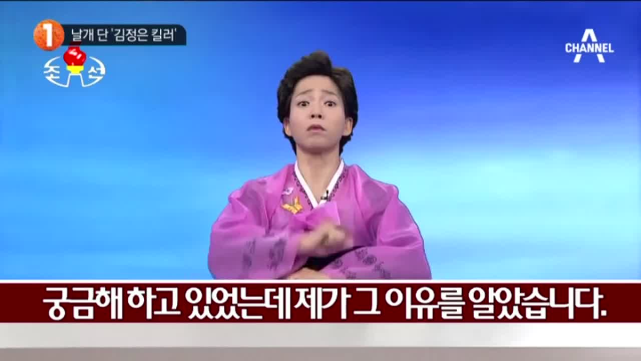 """정이랑이 전하는 """"북한보도"""""""