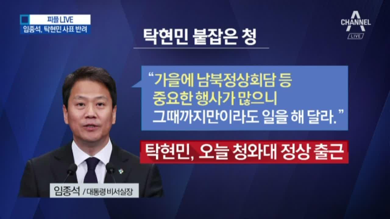 탁현민, 오늘 정상 출근…임종석, 탁현민 사표 반려