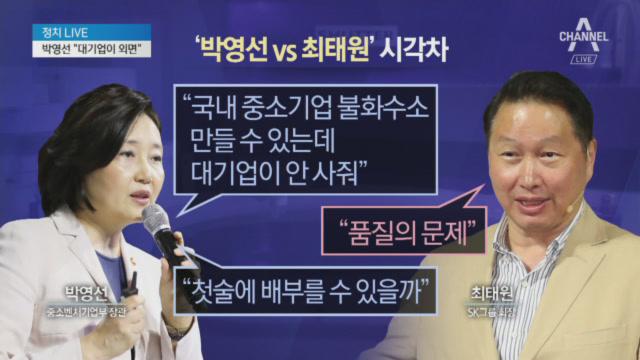 박영선-최태원, '불화수소 국산화'에 시각차