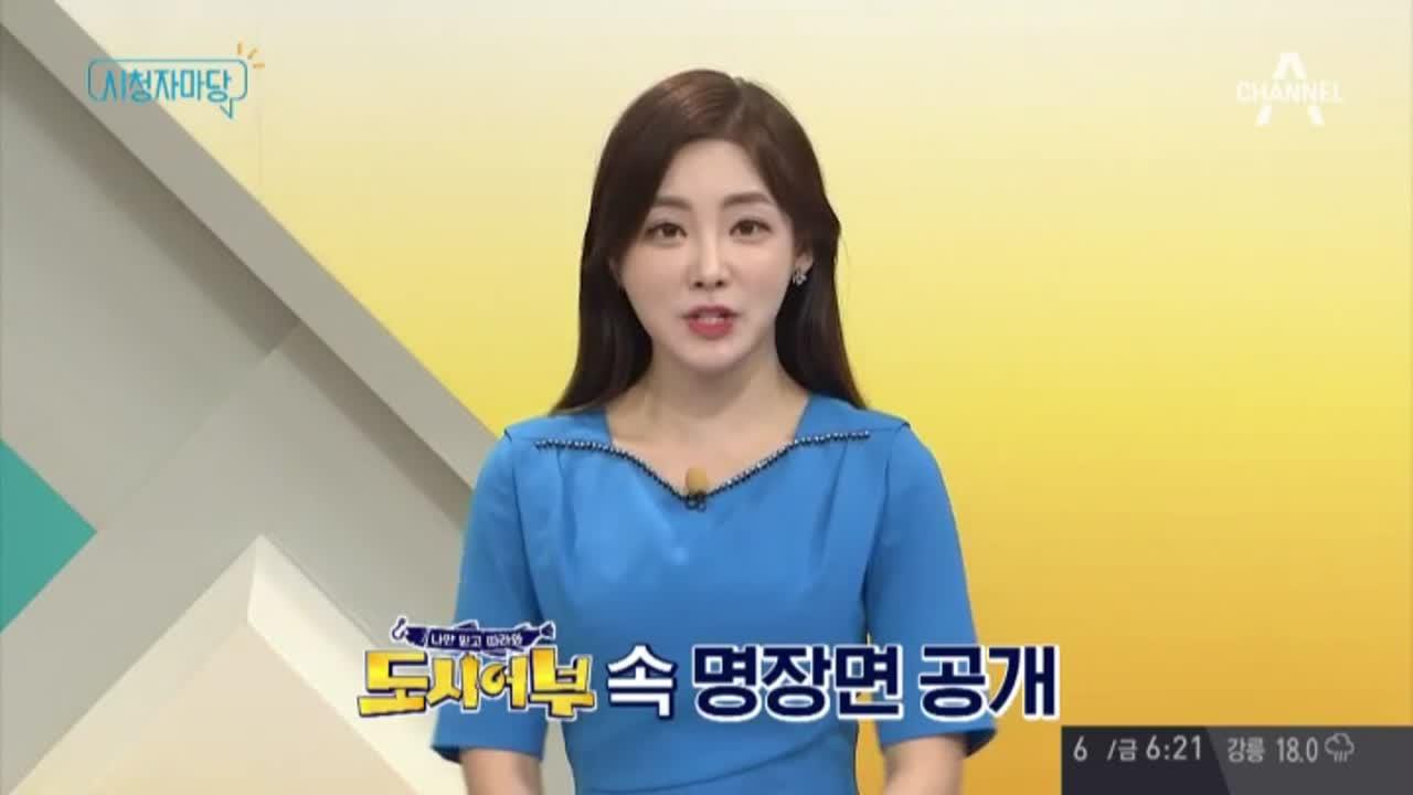 '채널A 시청자 마당' 344회