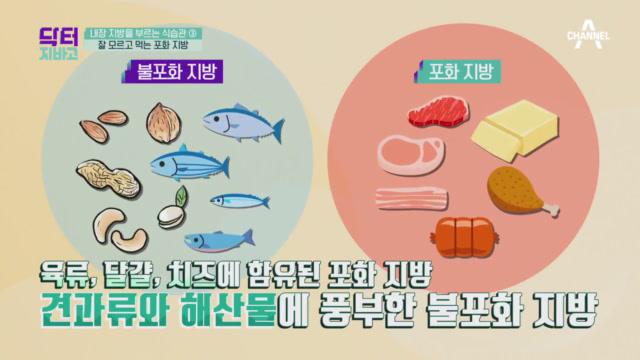 내장 지방 부르는 식습관은 포화 지방 탓?!