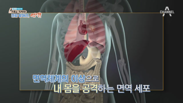 [특별기획] 가족을 지켜라! 건강방어선,면역