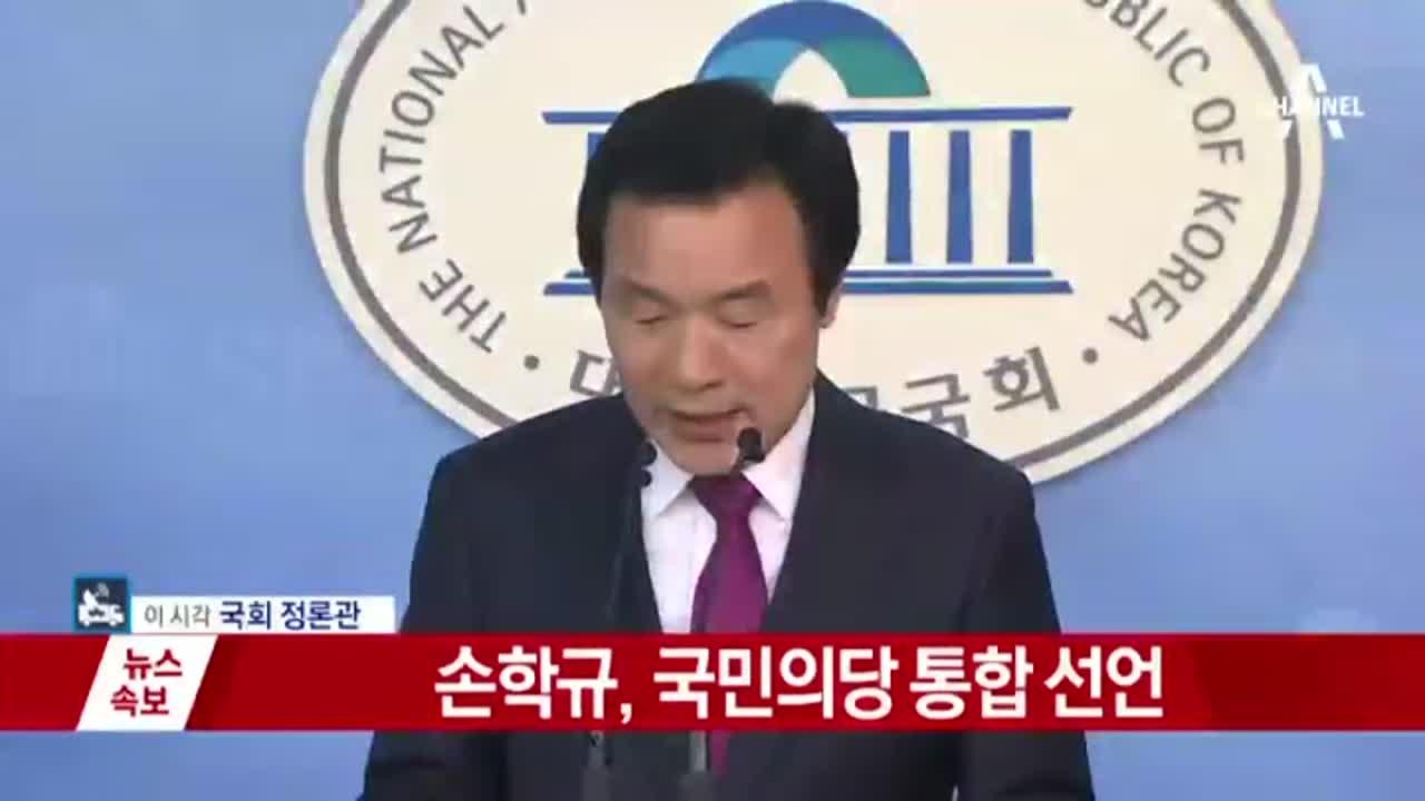 [속보]손학규, 국민의당 통합 선언
