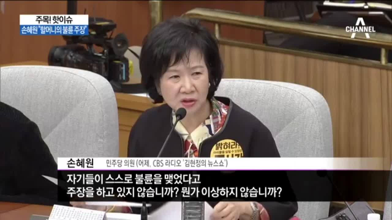 """손혜원 """"할머니의 불륜 주장""""…""""참 희한한 재판 """""""