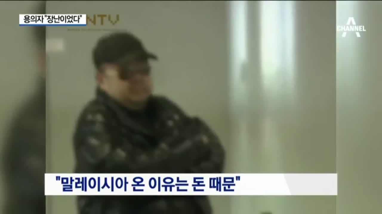 """CCTV 용의자 체포 """"장난이었다"""""""
