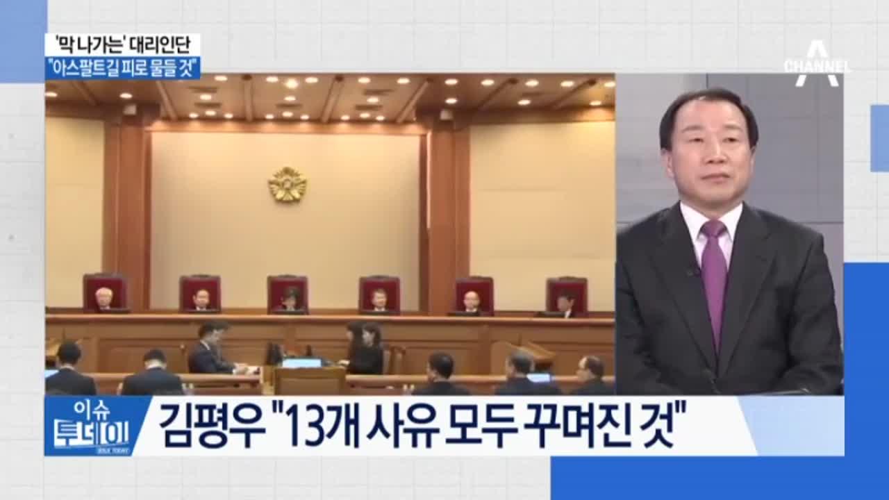 """김평우, 헌재서 필리버스터…""""탄핵 인용 땐 내란"""""""