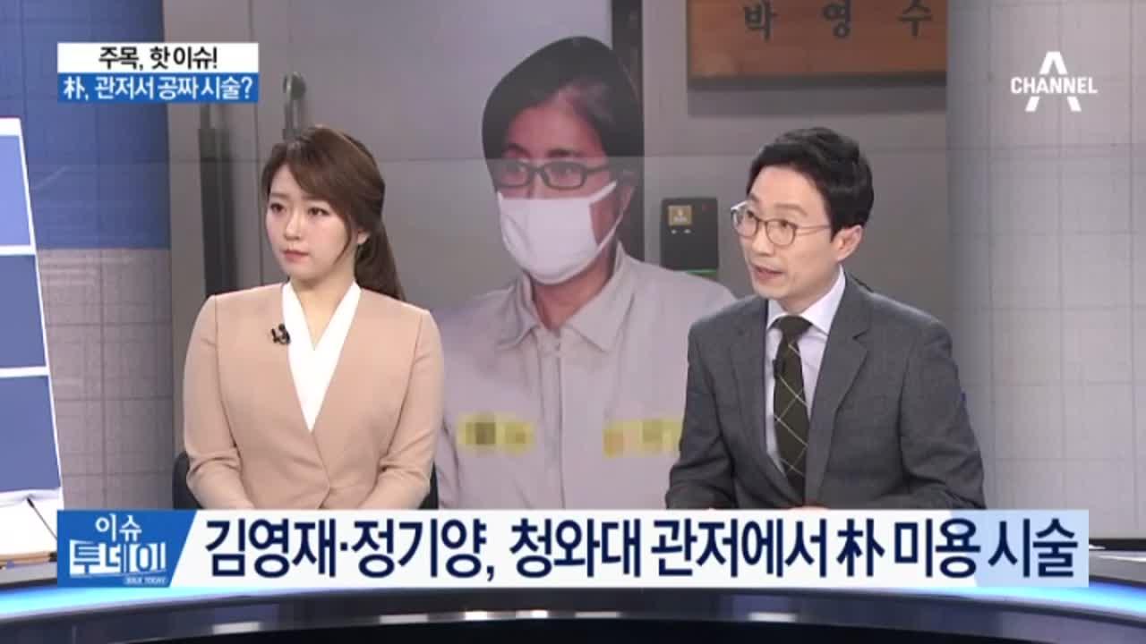 김영재·정기양, 청와대 관저에서 박 대통령 미용 시술