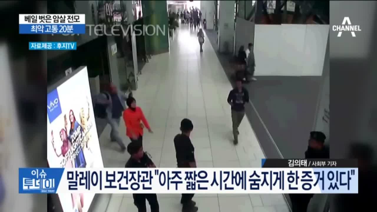 베일 벗은 암살 전모…국정원 '김정남 암살' 보고