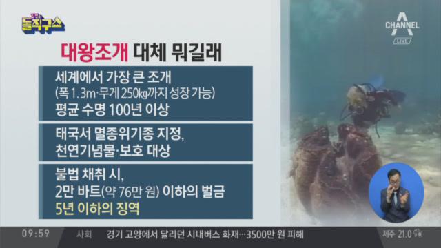 [2019.7.8] 김진의 돌직구쇼 260회