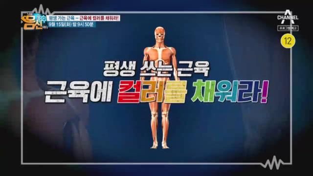 [예고] 평생 쓰는 근육, 근육의 컬러를 채워라!